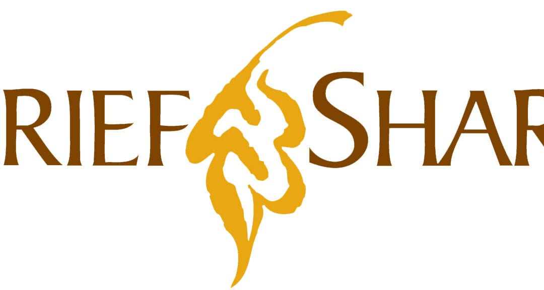 New GriefShare Class Begins January 10th